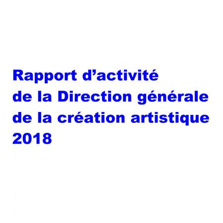 Rapport d'activité de la DGCA 2018