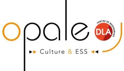 Les associations culturelles employeuses en France